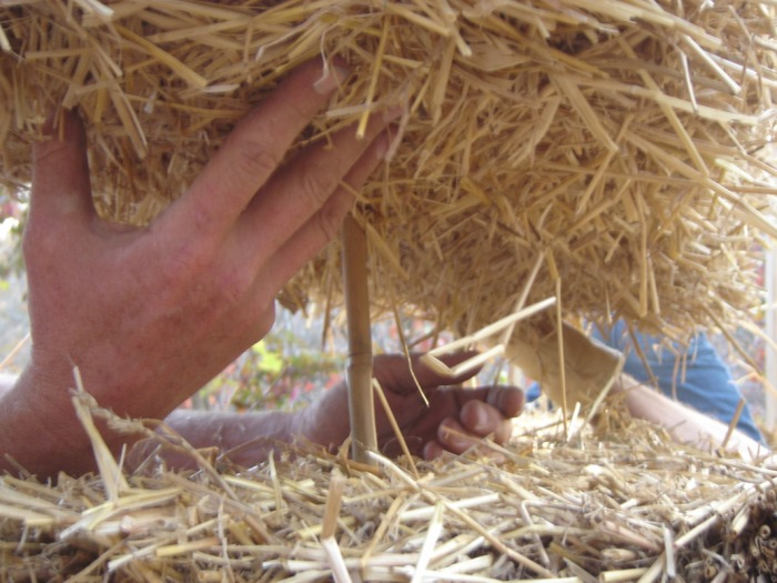 Straw Bale Cob Earth Plaster Silver Seed Farms Llc